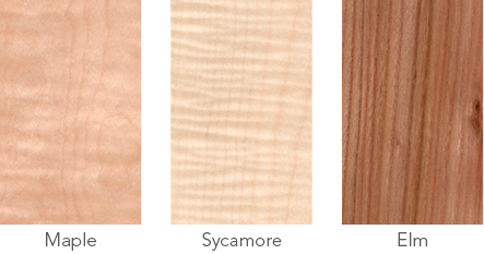 Wood samples of maple, sycamore and elm.
