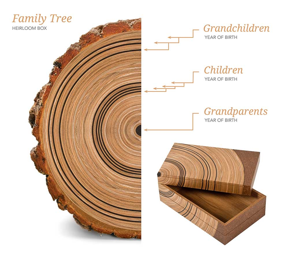 Diagram showing Edward Johnson's Family Free concept, that is reminiscent of the growth rings of a tree trunk.